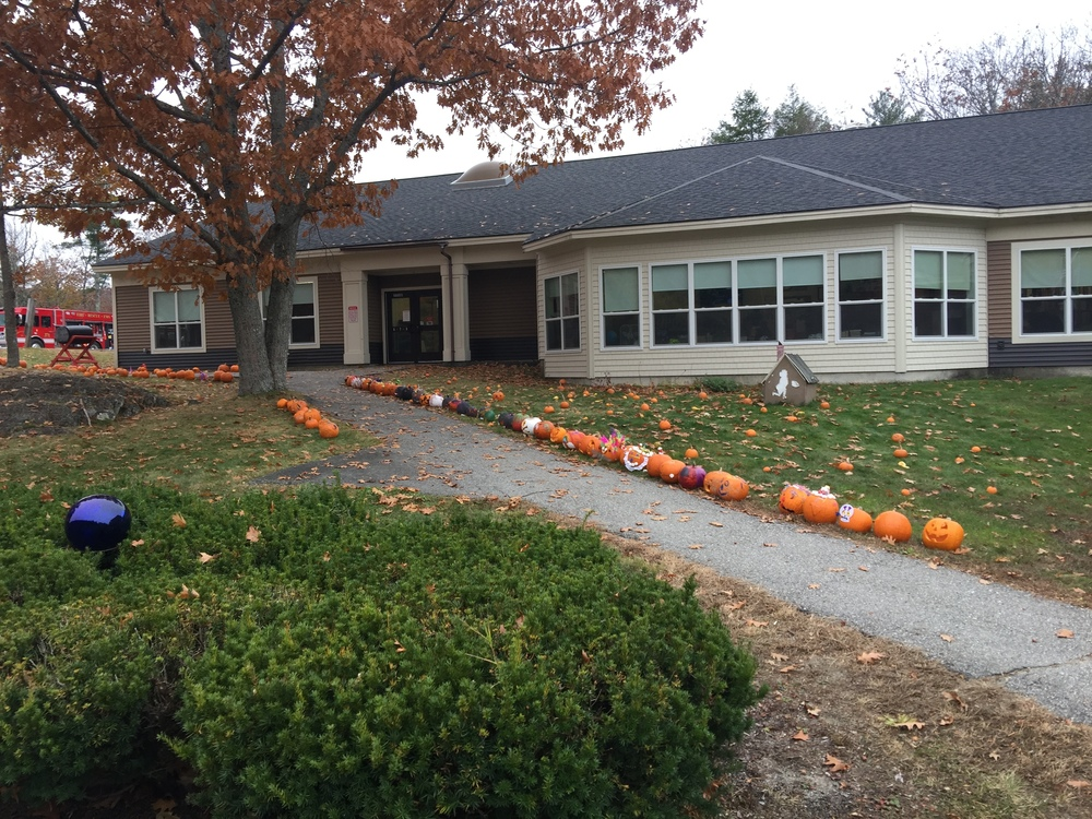 Dedham School's Pumpkin Fun